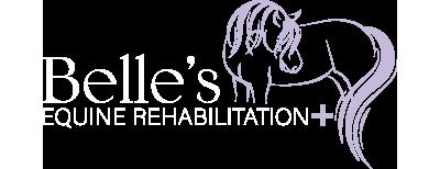 Belles Equine Rehabilitation